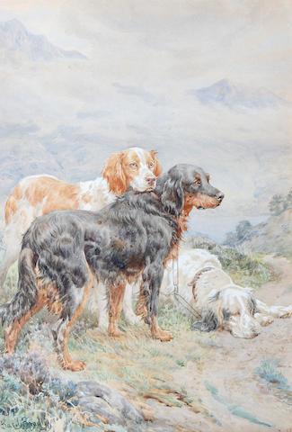 Basil Bradley, RWS (British, 1842-1904) Setters in a landscape