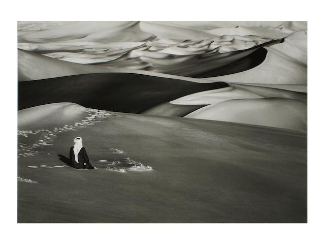Sebastião Salgado (Brazilian, born 1944) Sahara, Algeria, 2009 Paper 60 x 89.8cm (23 5/8 x 35 3/8in), image 54 x 75.4cm (21 1/4 x 29 11/16in).
