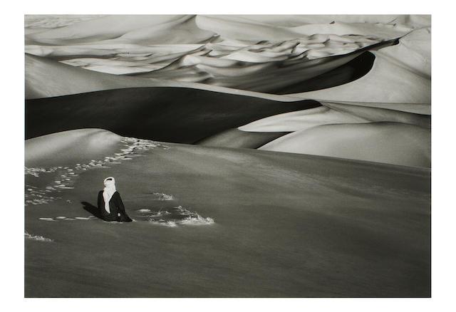 Sebastião Salgado (Brazilian, born 1944) Sahara, Algeria, 2009