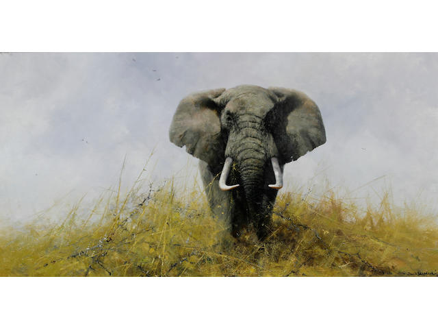 David Shepherd, O.B.E. (British, born 1931) A tasker elephant in grassland