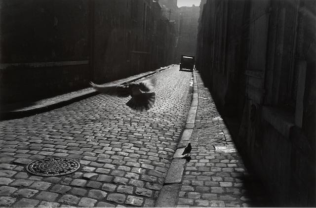 Elliott Erwitt (American, born 1928) Orléans, France, 1952