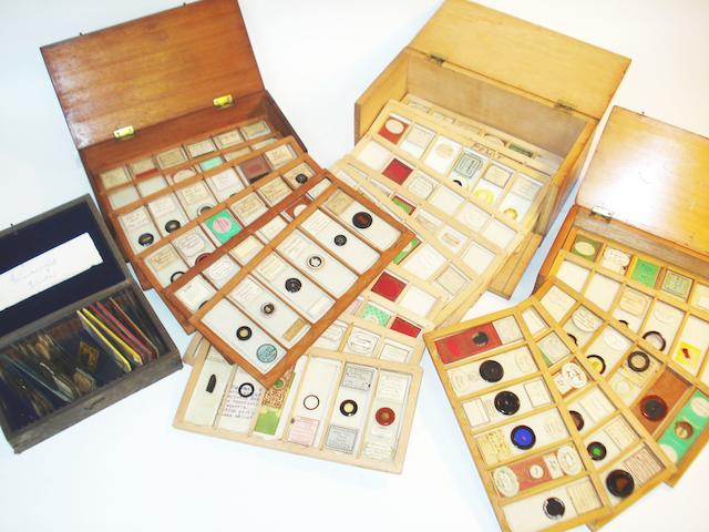 A collection of microscope specimen slides, late 19th century,