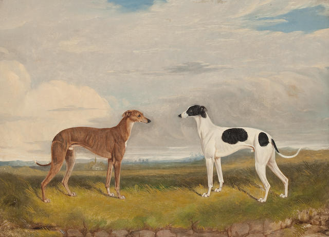 English School, 20th Century A pair of greyhounds in a landscape