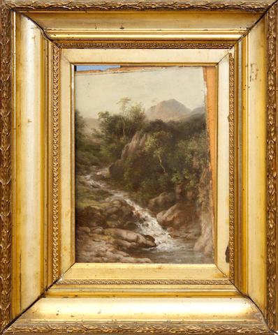 W.W. Gill (British, active 1854-1867) Longdale; Irwell