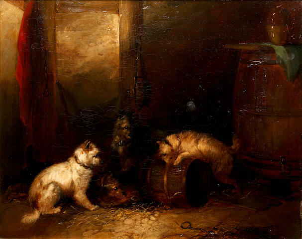 Follower of George Armfield (British, 1810-1893) Terriers ratting in a barn