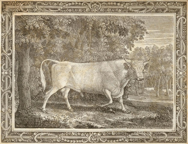 BEWICK (THOMAS) The Wild Bull... At Chillingham-Castle, Northumberland, 1789