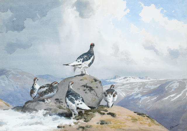 John Cyril Harrison (British, 1898-1985) Winter quarters-Ptarmigan