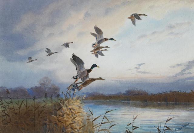 John Cyril Harrison (British, 1898-1985) Evening flight