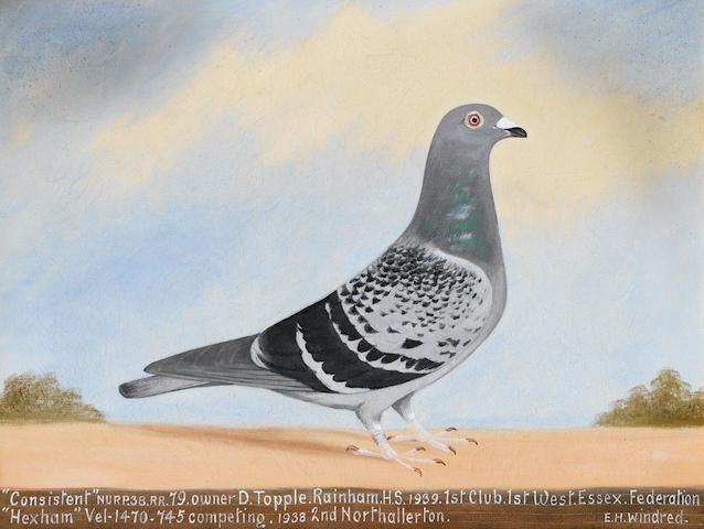 Edward Henry Windred (British, 1875-1953) 'War Declared'; 'John's Pride'; 'Consistent'; A set of three pigeon portraits