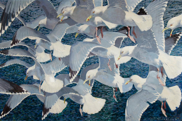Keith Hope Shackleton (British, born 1923) 'Gulls over a shoal'
