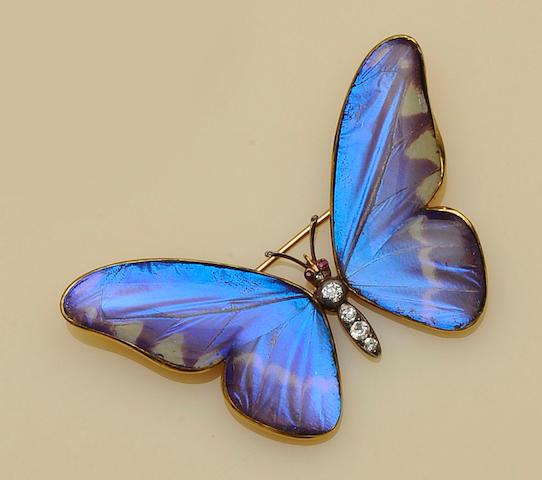 An Austrian gold mounted diamond set butterfly brooch