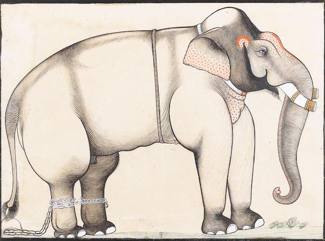 A study of an elephant Sawar, circa 1740