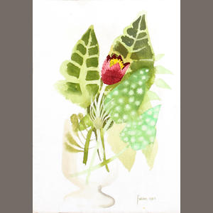Mary Fedden R.A. (British, born 1915), Mary Fedden, Pulsa tilla, signed and dated 1985, inscribed verso and numbered 28, watercolour 'Pulsa tilla'