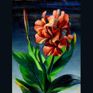 Vladimir Griegorovich Tretchikoff (South African, 1913-2006) Red canna