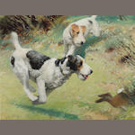 Septimus E. Scott (British, 1879-1962) Fox Terriers chasing a rabbit; and The red spotted handkerchief