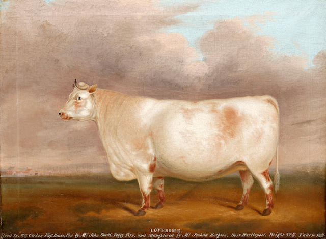 English Primitive School, 19th Century Lovesome - a prize bull