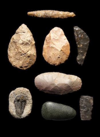 Seven African and European flint implements and a trilobite fossil, 8