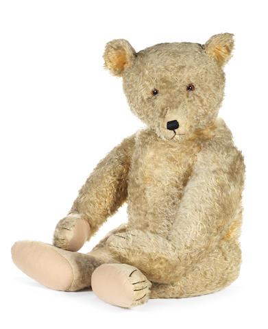 A rare and large Steiff teddy bear