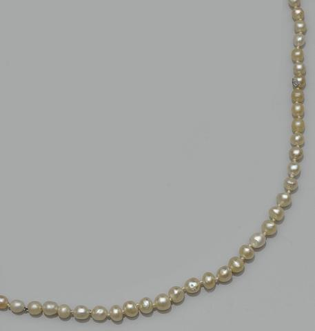 A single strand pearl necklace