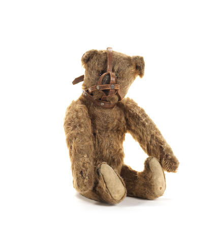 Steiff cinnamon Teddy bear with muzzle, circa 1909