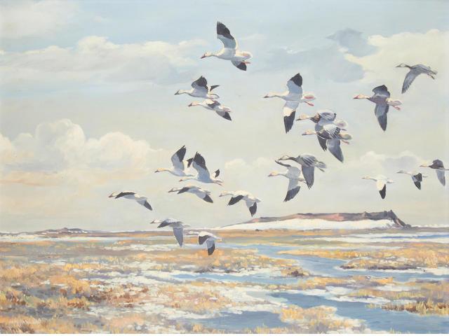 Hugh Monahan (Irish, 1914-1970) Back to their Arctic feeding grounds