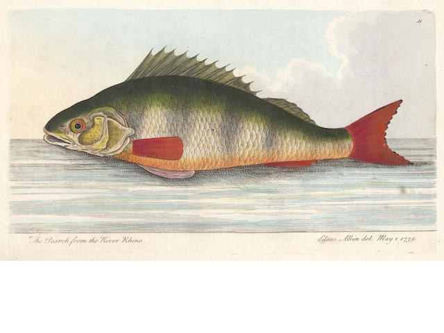 NORTH (ROGER) Treatise on Fish and Fish-Ponds... Illustrated with Eighteen Beautifully-coloured Specimens, by Ebenezer (sic) Albin, c.1824