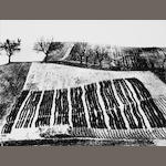Mario Giacomelli (Italian, 1925-2000) Untitled, from 'Presa di coscienza sulla natura' ('On Being Aware of Nature'), Marche, 1954-2000 29.8 x 39.9cm (11 3/4 x 15 11/16in).
