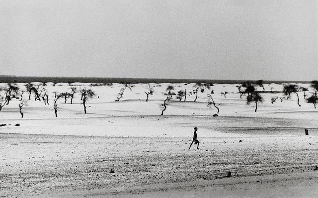 Sebastião Salgado (Brazilian, born 1944) Lake Faguibine, Mali, 1985 Paper 50.5 x 60.8cm (19 7/8 x 23 15/16in), image 33.5 x 51.5cm (13 3/16 x 20 1/4in).