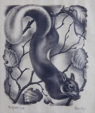 Dame Eileen Mayo (British, 1906-1994) The Squirrel Woodcut, c.1932, on tissue thin Japan, signed, titled and numbered 69/80 in pencil, with margins, 185 x 150mm (7 1/4 x 6in)(I)