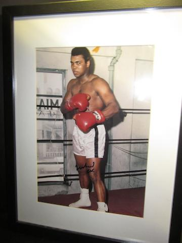 A Muhammad Ali hand signed picture