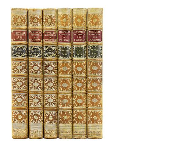 BLOCH (MARKUS-ELIEZER) Ichtyologie, ou histoire naturelle, générale et particulière des poissons. Avec des figures enluminées, dessinées d'après nature, 12 parts bound in 6 vol., FINE COPY, 1785-97