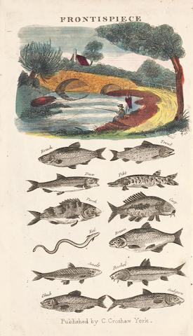 ANGLER'S ASSISTANT The Angler's Assistant, or the Complete Art of Angling, York, [c.1820]