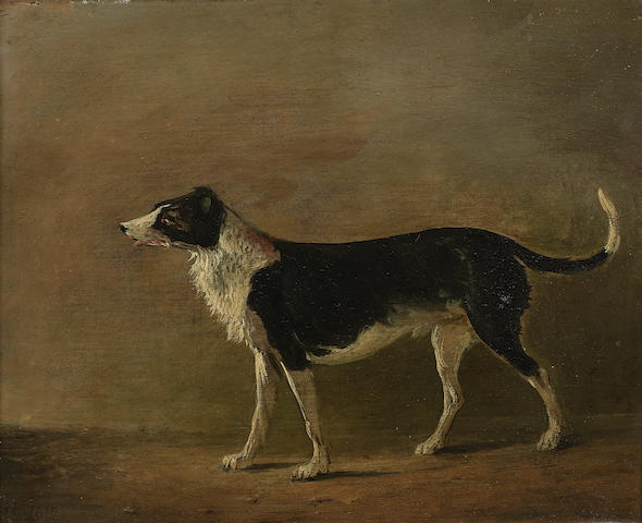 Alexander Nasmyth (Edinburgh 1758-1840) Maida, Sir Walter Scott's Dog 22 x 27 cm. (8 11/16 x 10 5/8 in.)