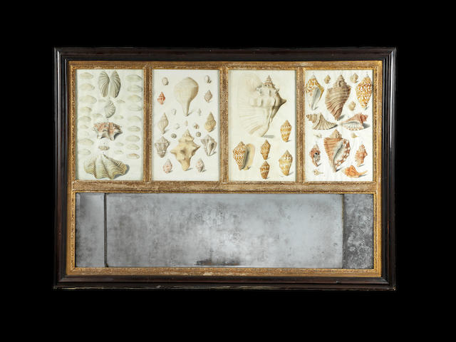 A MID 18TH CENTURY WALNUT AND PARCEL GILT LANDSCAPE TRUMEAU MIRROR INSET WITH FOUR WATERCOLOURS OF SHELLS SAID TO BE BY ANTON VON SHEIDTL, FURTHER RESEARCH REQUIRED
