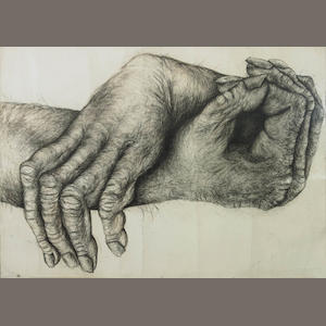 Lisa Roet (born 1967) Primate Hands No.2 2006