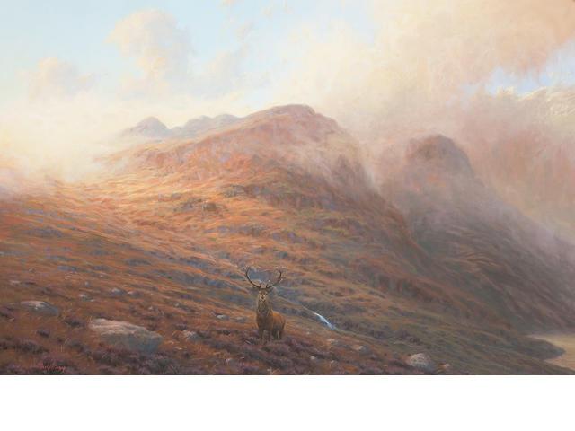 Ian MacGillivray (British, born 1964) Stag in a Highland Landscape