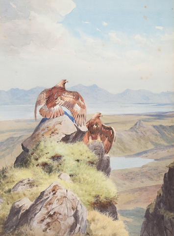 John Cyril Harrison (British, 1898-1985) Golden Eagles sunning