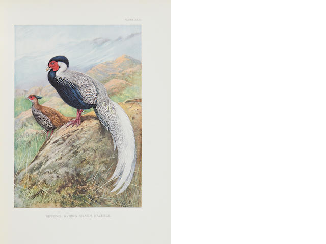 BEEBE (WILLIAM) A Monograph of the Pheasants, 4 vol., FIRST EDITIONS, NUMBER 179 OF 600 COPIES, 1918