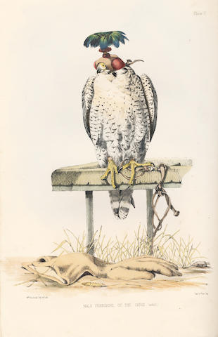 SALVIN (FRANCIS HENRY) and WILLIAM BRODRICK Falconry in the British Isles, FIRST EDITION, 1855