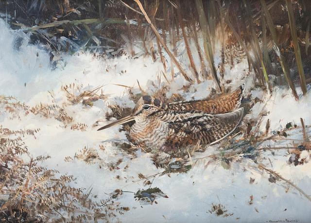 Colin W. Burns (British, born 1944) Woodcock in a Winter Landscape