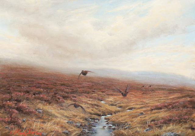 Ian MacGillivray (British, born 1964) Pheasants in flight
