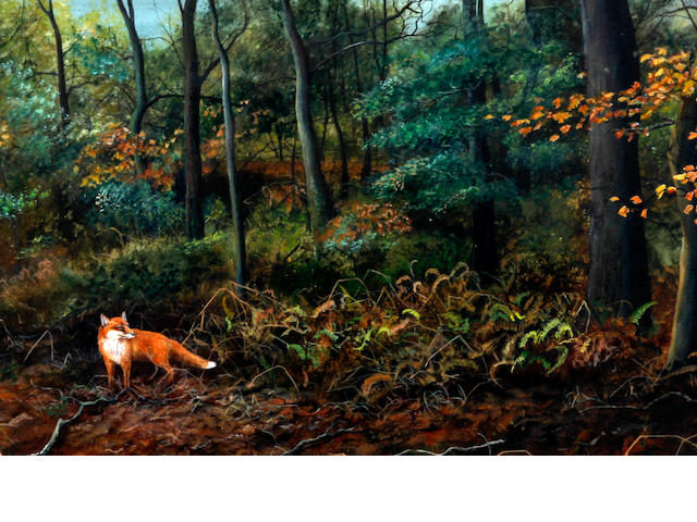 Jeremy Paul (born 1954) Fox in a woodland, together with, 'Peregrine'; 'Tawny Owl', badger by the sett, 'Doormouse', and 'Comma'