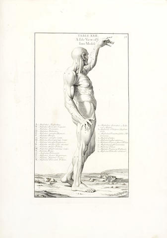 GENGA (BERNARDINO) Anatomy Improv'd and Illustrated with Regard to the Uses thereof in Designing: Not Only Laid Down from an Examen of the Bones and Muscles of the HUman Body, but also Demonstrated and Exemplified from the Most Celebrated Antique Statues in Rome, [1723]