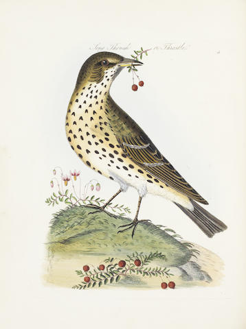 BOLTON (JAMES) Harmonia Ruralis, or, an Essay towards a Natural History of British Song Birds... New Edition, Revised and Augmented, 2 vol. bound in one, 1845