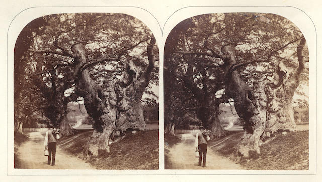 PHOTOGRAPHY The Stereoscopic Magazine: A Gallery of Landscape Scenery, Architecture, Antiquities, and Natural History, accompanied with Descriptive Articles by Writers of Eminence