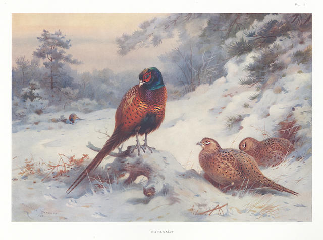 THORBURN (ARCHIBALD) Game Birds and Wild-Fowl of Great Britain and Ireland, 1923