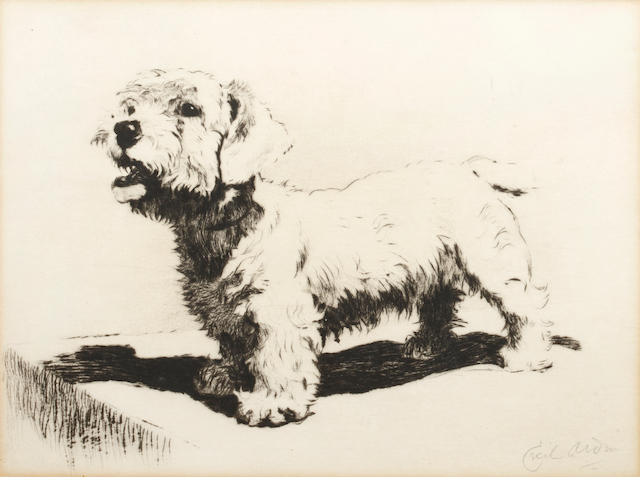 Cecil Charles Windsor Aldin, RBA (British, 1870-1935) Standing terrier signed in pencil  etching 16 x 21cm.