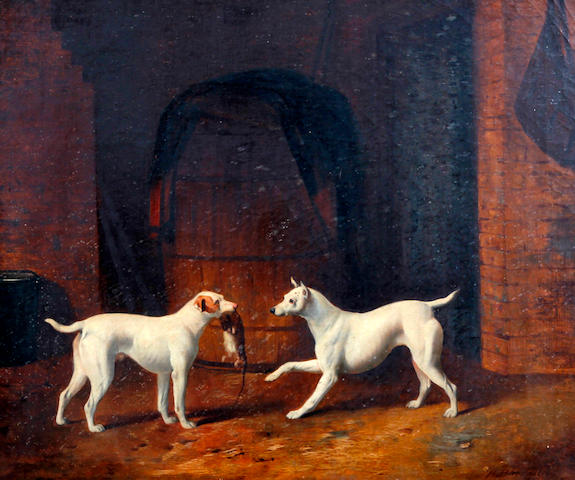 Henry Barraud (British, 1811-1874) Two short haired fox terriers with catch