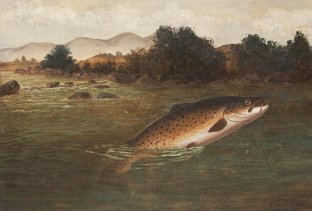 A. Roland Knight (British, active 1879-1921) A Brown Trout Jumping; each 35.5 x 51cm (14 x 20 1/16in). (2)