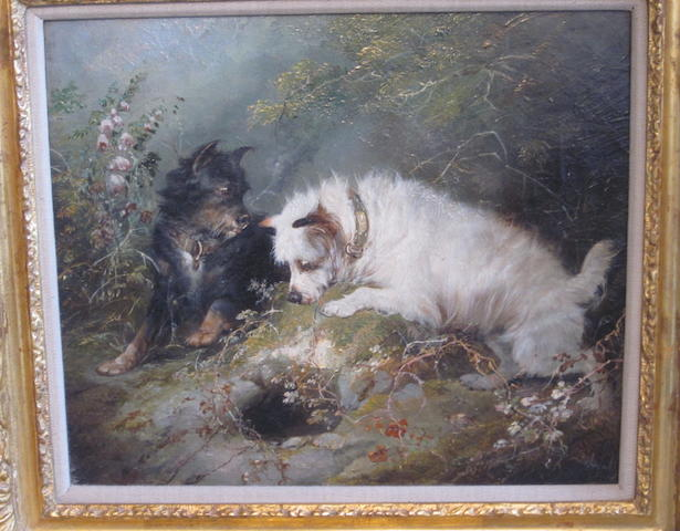 George Armfield (British, 1810-1893) Terriers ratting
